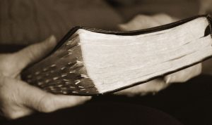 bible-23